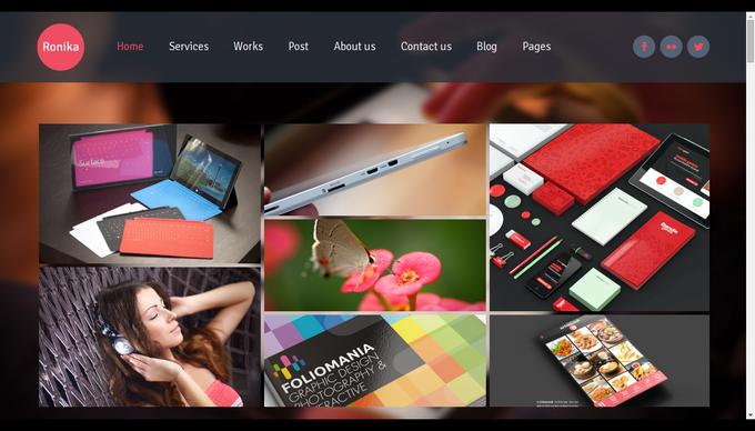 Ronika-one-page-multi-site-wordpress-theme-beispiel
