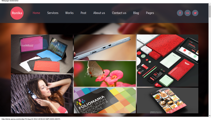 Ronika-one-page-multi-site-wordpress-theme-beispiel